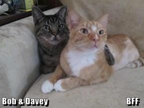 Bob & Davey                                             BFF