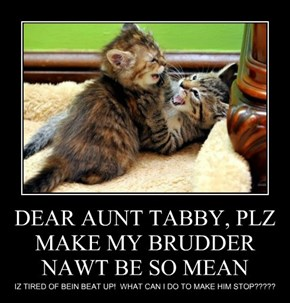 DEAR AUNT TABBY, PLZ MAKE MY BRUDDER NAWT BE SO MEAN