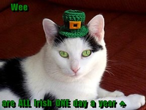 Wee  are  ALL  Irish  ONE  day  a  year  ♣