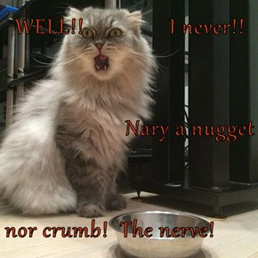 WELL!!               I never!! Nary a nugget nor crumb!  The nerve!
