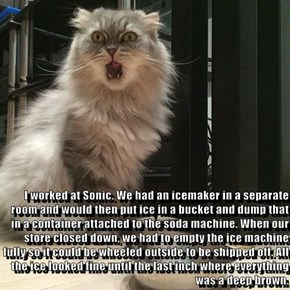 I worked at Sonic. We had an icemaker in a separate room and would then put ice in a bucket and dump that in a container attached to the soda machine. When our store closed down, we had to empty the ice machine fully so it could be wheeled outside to be s