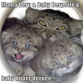 Mama Derp & Baby Derpette &  baby duper derpee....