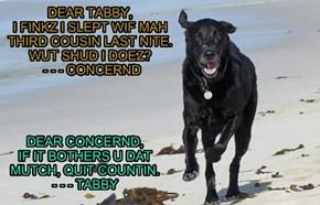 Dear Tabby...