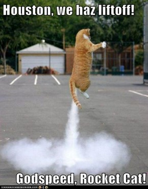 Houston, we haz liftoff!   Godspeed, Rocket Cat!