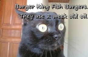 Burger King Fish Burgers. They use 2 week old oil.