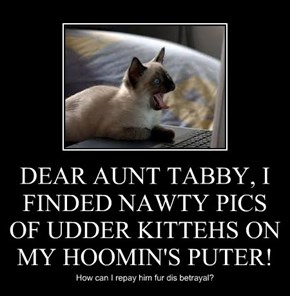 DEAR AUNT TABBY, I FINDED NAWTY PICS OF UDDER KITTEHS ON MY HOOMIN'S PUTER!