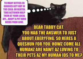 DEAR TABBY CAT,   YOO HAB THE ANSWER TO JUST ABOUT EBERYFING. SO HERES A QUESHUN FOR YOU. HOWZ COME ALL HUMANZ ARE NAWT AZ LUVING TO THEIR PETS AZ MY HUMAN IDS TO ME?