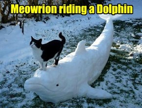 Meowrion riding a Dolphin