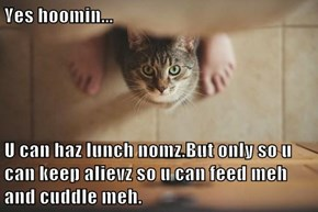 Yes hoomin...  U can haz lunch nomz.But only so u can keep alievz so u can feed meh and cuddle meh.
