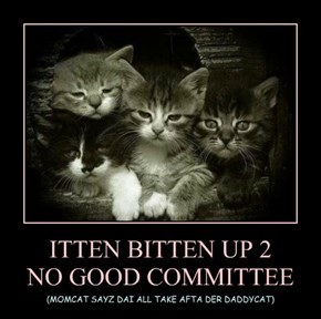 ITTEN BITTEN UP 2  NO GOOD COMMITTEE