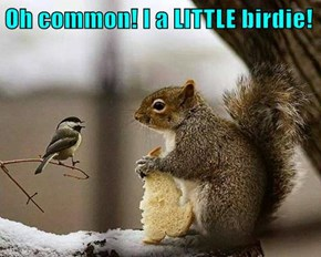 Oh common! I a LITTLE birdie!