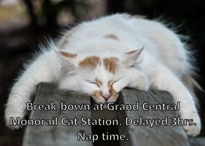 Break-bown at Grand Central Monorail Cat Station. Delayed 3hrs. Nap time.