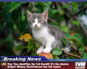 Breaking News - Tiny Tina identifies the Tail Bandit! It's the elusive Snipe!! Mickey Skwirlchaser haz full report.