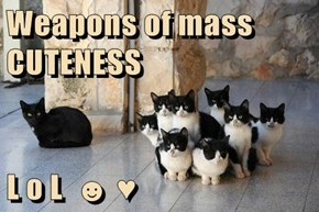 Weapons of mass CUTENESS   L o L  ☻ ♥