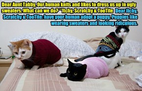 Dear Aunt Tabby, Our human knits and likes to dress us up in ugly sweaters. What can we do? **Itchy, Scratchy & TooTite