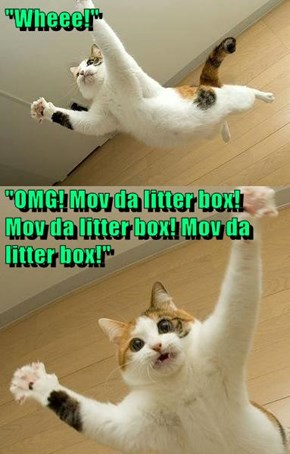 """Wheee!"" ""OMG! Mov da litter box!                                                      Mov da litter box! Mov da litter box!"""