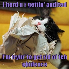 I herd u r gettin' audited  I'm tryin' to get rid of teh ebidence