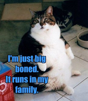 I'm just big boned.  It runs in my family.