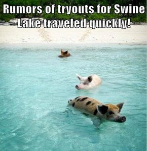 Rumors of tryouts for Swine Lake traveled quickly!