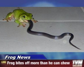 Frog News - Frog bites off more than he can chew