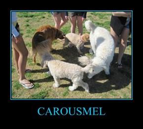 CAROUSMEL
