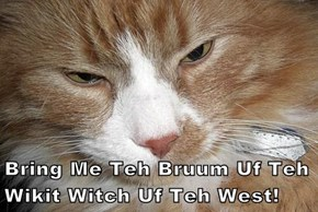 Bring Me Teh Bruum Uf Teh Wikit Witch Uf Teh West!