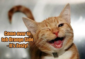 Come ovur tu teh Orange Side - It's Zesty!