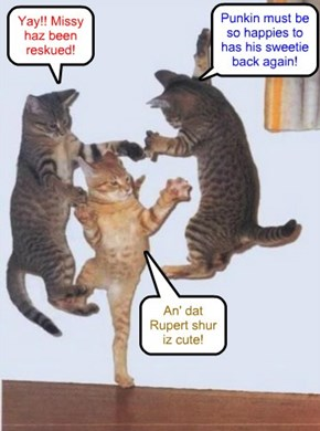 Kitties all around teh globe jump for joy at teh wunnerful news of Missy's rescue!