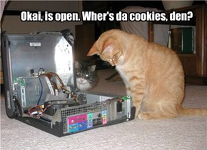 Okai, is open. Wher's da cookies, den?