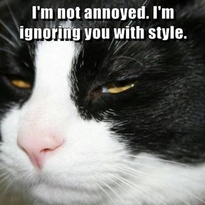 I'm not annoyed. I'm ignoring you with style.