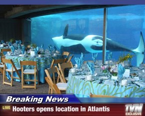 Breaking News - Hooters opens location in Atlantis
