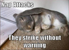 Nap Attacks  They strike without warning