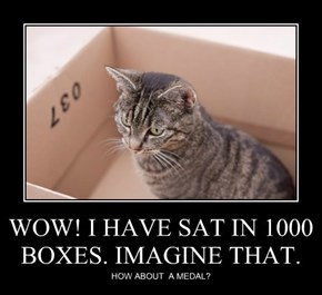 WOW! I HAVE SAT IN 1000 BOXES. IMAGINE THAT.