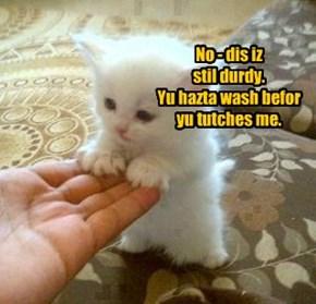 No - dis iz  stil durdy.  Yu hazta wash befor  yu tutches me.