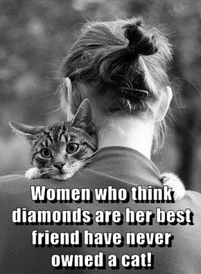 Women who think diamonds are her best friend have never owned a cat!