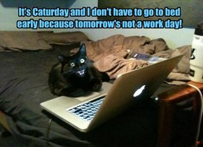 It's Caturday and I don't have to go to bed early because tomorrow's not a work day!