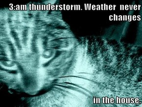 3:am thunderstorm. Weather  never changes  in the house.