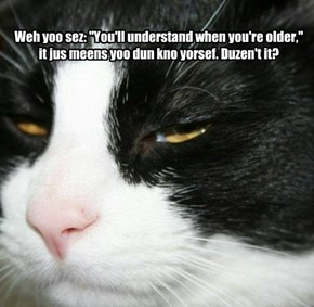 "Weh yoo sez: ""You'll understand when you're older,"" it jus meens yoo dun kno yorsef. Duzen't it?"