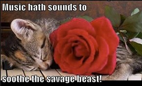 Music hath sounds to   soothe the savage beast!