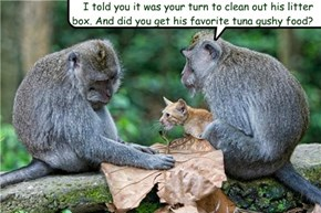 I told you it was your turn to clean out his litter box. And did you get his favorite tuna gushy food?