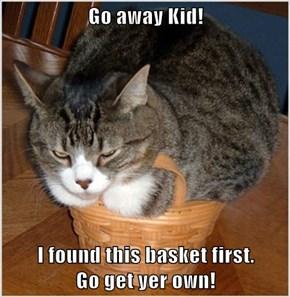 Go away Kid!  I found this basket first.                                                               Go get yer own!