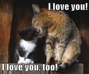 I love you!  I love you, too!