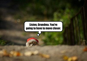 Listen, Grandma. You're going to have to move closer.