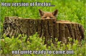 New version of Firefox....  not quite ready to come out.
