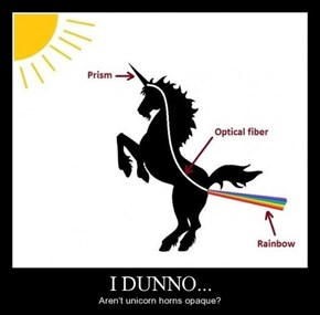 You Are Thinking Way Too Much About Unicorns