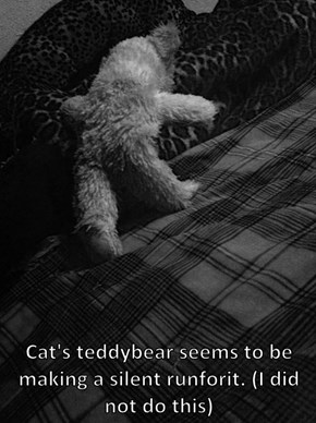 Cat's teddybear seems to be making a silent runforit. (I did not do this)