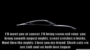 I'll meet you at sunset. I'll bring warm red wine, you bring smooth august nights, sweet swishes n herbs. Hunt thru the nights, I love you my friend. Sleek cats we are still and we both love Jaguar