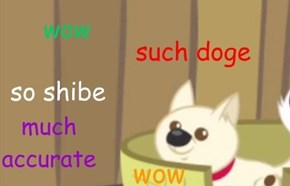 wow. so wrong. very not doge. such no shibe. much close but no cigar.