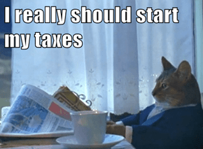 I really should start my taxes
