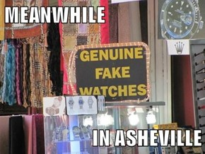 MEANWHILE  IN ASHEVILLE